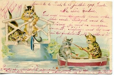 Carte Postale / Fantaisie / The Cat /// Chat