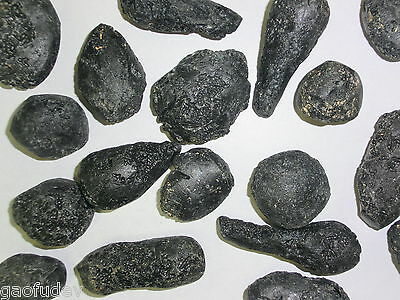 Black Indochinite Tektite Stone 15 to 50 gram Size Pieces 10 Pieces Lot