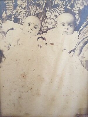 Antique Photograph Early 1900s Twin Babies Creepy Eyes Oddity Victorian 12x10