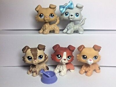 5x Littlest Pet Shop LPS Collie Dogs #363 #2210 #1194 #1542 #2452 Puppy Dogs