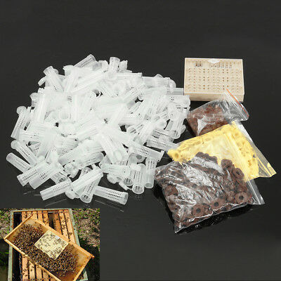 Queen Rearing Cupkit Box Cultivating Box 110 Cell Cups Cage Beekeeping Tool Kit