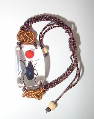 Insect Bracelet Shining Blue Leaf Beetle with Lucky Red Seed SL15 Clear