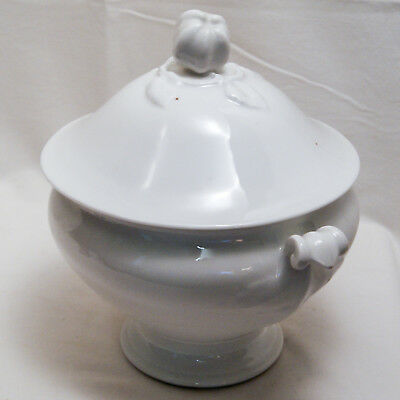 Soupiere Faience Ancienne Porcelaine Blanche Pomme Apple White Ironstone Tureen