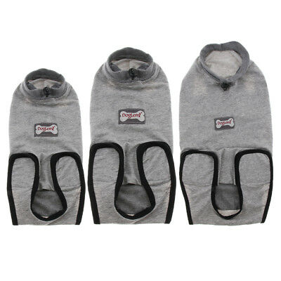 Pet Cat Recovery Suit for Abdominal Wounds or Sterilization Operation
