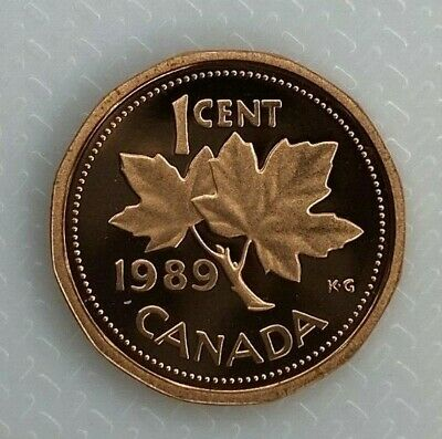1989 Canada 1 Cent Proof Penny Heavy Cameo Coin