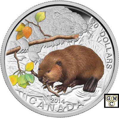 2014 'Beaver -Baby Animals' Colorized Prf $20 Fine Silver 1oz. Coin (13945) OOAK