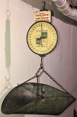 Vintage Advertising Purina Feed Saver Cow Culler 60 Lb. Hanging Scale W/ Pan