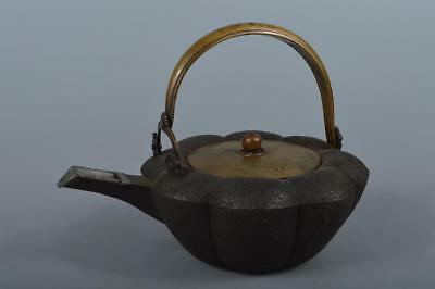 R4063: Japan Old Copper rough surface pumpkin-shaped SAKE KETTLE Bottle Choshi