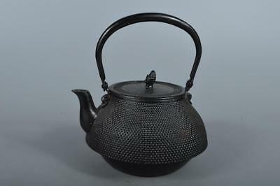 R4302: Japanese XF Iron Arare sculpture TEA KETTLE Teapot Tetsubin Tea Ceremony