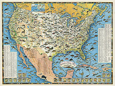 Pictorial Sportsmen's Fishing Map United States Decor Gifts Art Poster Decor