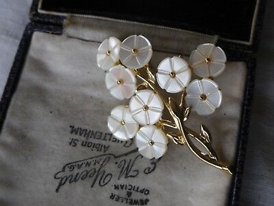 Lovely Vintage 190 Genuine Mother of Pearl Brooch