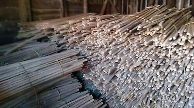 25 Primitive Antique Tobacco Sticks/Rustic/Crafts/Fences*From Tennessee Hills!!