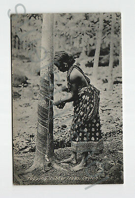 1920 PPC Tapping Rubber Trees Ceylon