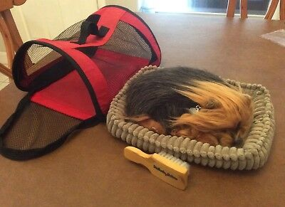 Perfect Petzzz Yorkie Dog Sleeping Breathing Yorkshire Terrier Puppy