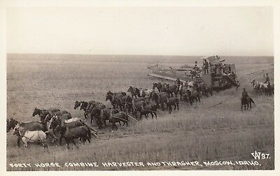 Rppc Forty Horse Combine Harvester And Thrasher Moscow Id Idaho Postcard