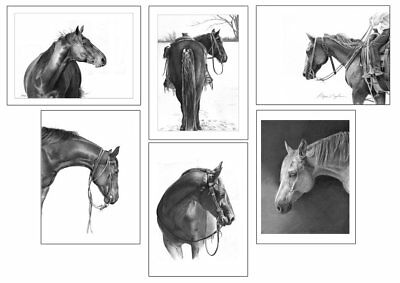 Equine Notecards Set of 6 Different Horse Images~By ROBYN COOK PENCIL ARTIST~
