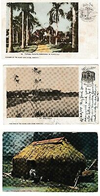 hawaiian postcard lot of 3 old post card two used and one new