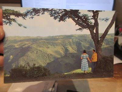 Vintage Old Postcard PUERTO RICO Barranquitas Road Mountains Lovers Hold Hands