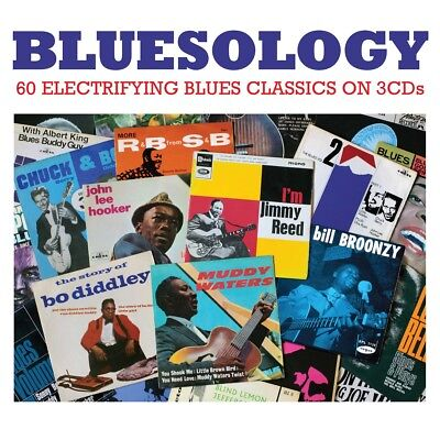 A STACK OF Blues VARIOUS BLUES Best Of 60 Classic Songs