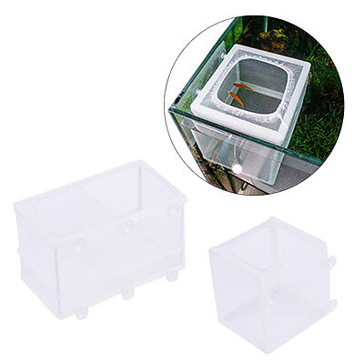 Pet Aquarium Fish Tank Guppy Breeding Breeder Rearing Trap Box Hatchery S/L New