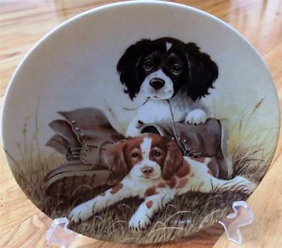 Bradford Exchange Knowles Kaatz Springer Spaniel Pups N Boots Limited Ed Plate
