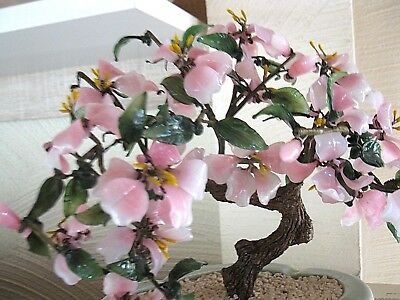 old Jadebaum 50-60`s Skulptur Feng Shui Kirschblüte Bonsai China Baum Jade tree