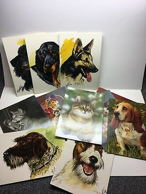 Lot Of 12 CATS  AND DOGS  COLLECTIBLE POSTCARDS Art/ Photos ~ Foreign
