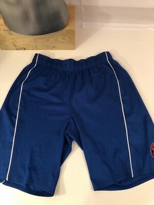 5ea23cdb902 VTG New York Knicks Authentic NBA Basketball Shorts size L Blue White  Pinstripe