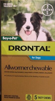 Drontal Allwormer Chewable For Dogs 10kg 5pack