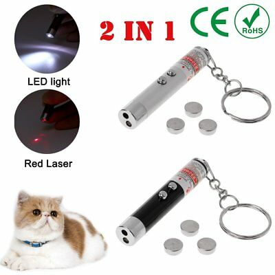 Portable 2 In 1 Mini Laser Pen Pointer Keychain Keyring With torch Cat Dog Toy