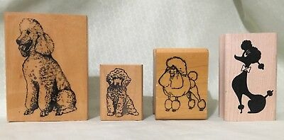 4 Preowned Poodle Rubber Stamps Wood Mounted Stamp Gallery Clacriller Judi Kins