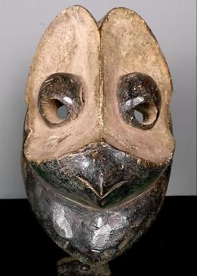 Old  Tribal Geh Bird  Mask   --  Coted'Ivoire  BN 51