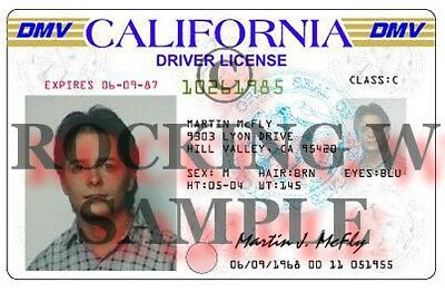 Back to the Future Marty Mcfly Prop Replica Drivers License BTTF
