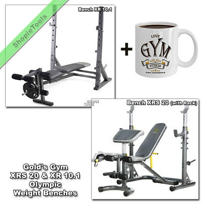 Outstanding Gold Gym Weight Bench Xr 10 1 Or Xrs 20 Olympic Press Fid Unemploymentrelief Wooden Chair Designs For Living Room Unemploymentrelieforg