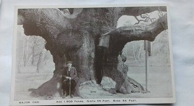Vintage postcard,Major Oak, Solid Oak, 1500 years old, about 1920s to 1930s