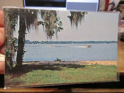 Vintage Old GEORGIA Postcard Lake Blackshear Crisp County Cordele Veterans Park