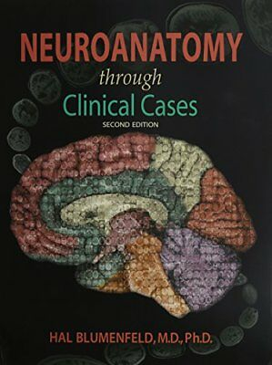 Neuroanatomy Through Clinical Cases (2010, Paperback)