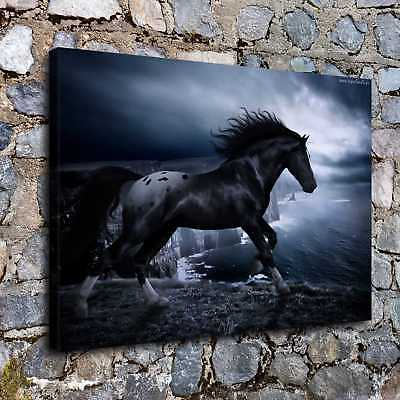 """12""""x16"""" Dark Horse HD Canvas prints Painting Home decor Room Wall art Pictures"""