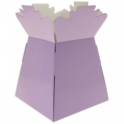 Lilac - Living Vases Florist Bouquet Box Flower Plant Aqua Sweet Gift Boxes