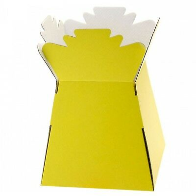 Yellow - Living Vases Florist Bouquet Box Flower Plant Aqua Sweet Gift Boxes
