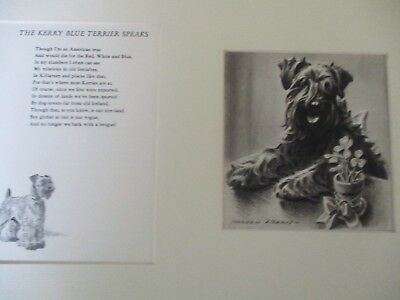Morgan Dennis Kerry Blue Terrier Print