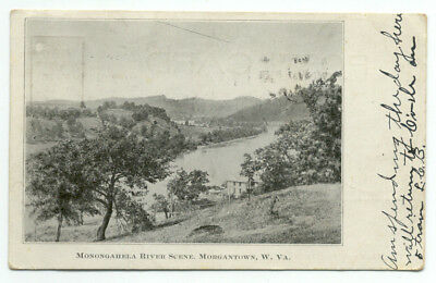 Morgantown WV Monongahela River Scene c1900s Postcard - West Virginia