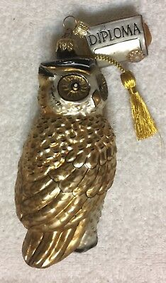 Dept 56 Wise Graduation Owl w/ Diploma Blown Glass Christmas Ornament fr Poland