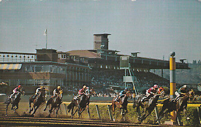 Longacres Horse Racing Renton Washington near Seattle Postcard 1960's