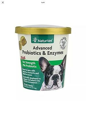 NaturVet Advance PROBIOTICS ENZYMES for Dog Vet Strength Digestive Issue 69ct