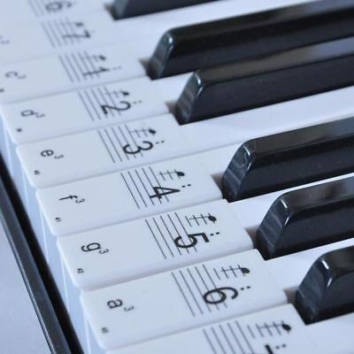 Transparent 54 61 Keys Electronic Keyboard Sticker Piano Stave Note Sticker Hot