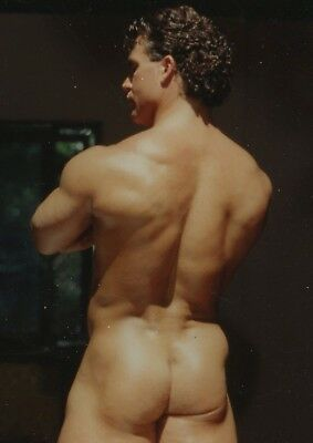 Vintage Colt Beautiful Beefy Butt Smooth Nude Scott Kerr 5x7 Photo Gay 16244