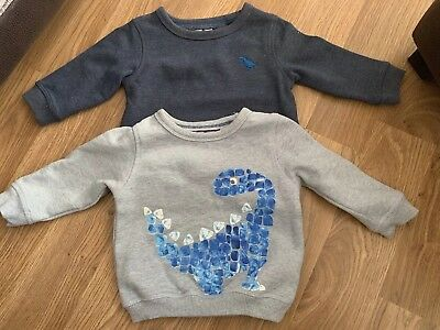 NEXT Baby Boys Blue Dinosaur Print Jumpers 6-9 Months Used