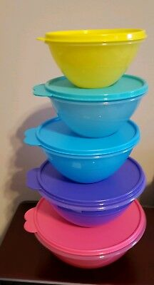 New Tupperware 5 Pc Wonderlier Classic  Bowl Set
