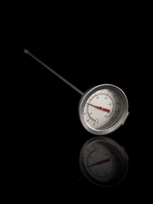 """Home Brew Beer Thermometer (12"""" Probe)"""